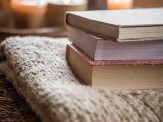 книги на пледе